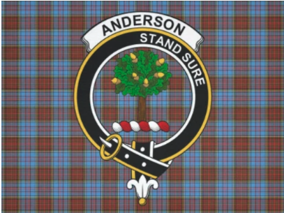 Anderson Stand Sure