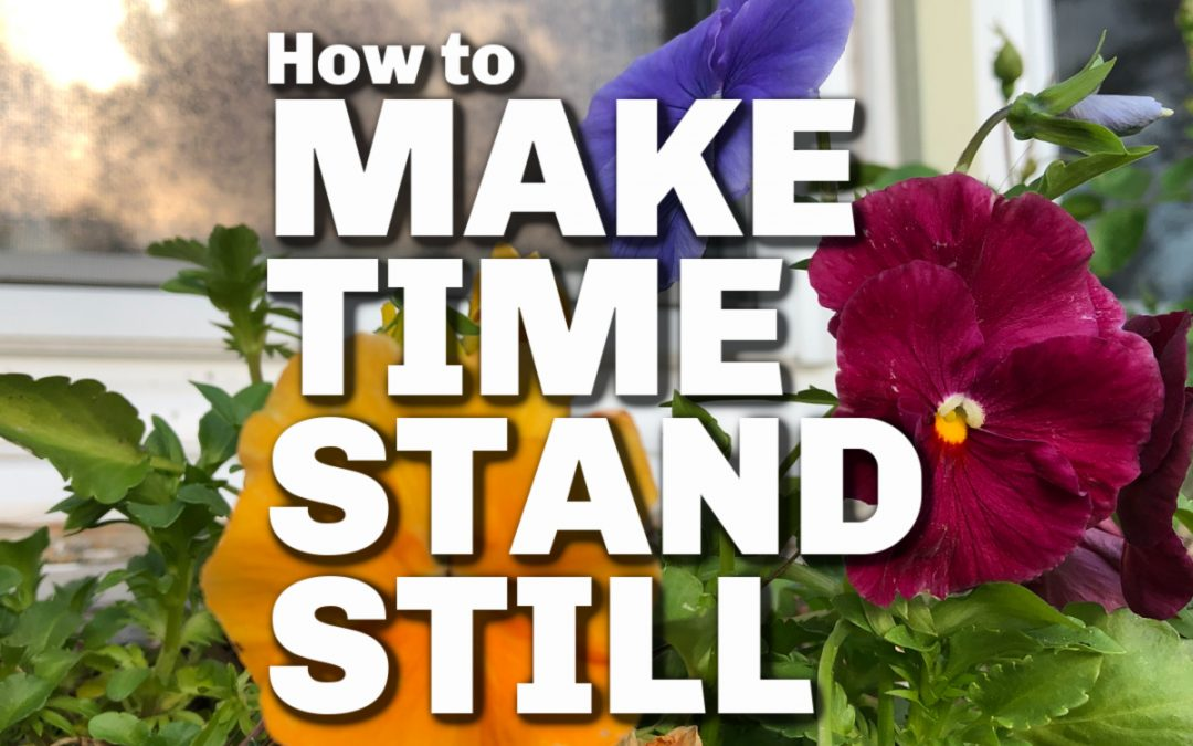 How to Make Time Stand Still Just for a Little While